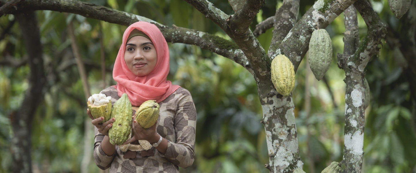 Five years of cocoa life empowering cocoa farmers in Indonesia